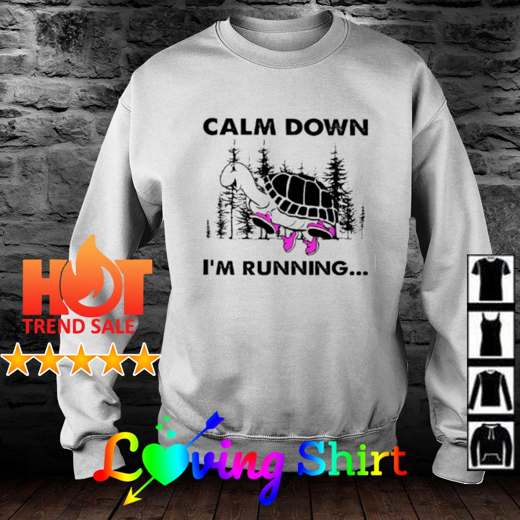 Turtle Calm down I'm running s sweater
